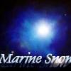 Marine Snow | 生き物と生きる生き物・ヒトも生き物